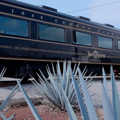 Tren Jose Cuervo Express, premium plus, barra libre, tequila, paisaje agavero.