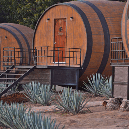 tequila, fabricas de tequila., paisajes agaveros, degustación.