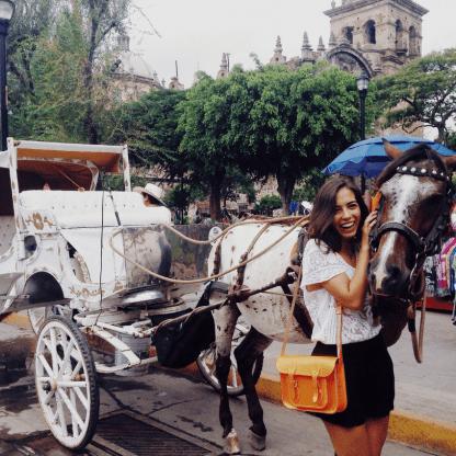 calandrias en guadalajara, tour en calandria en guadalajara, calandria, carruaje con caballo, rrecorido en calandria, paseo en calandria, paseo en carruaje, paso por guadalajara en calandria,