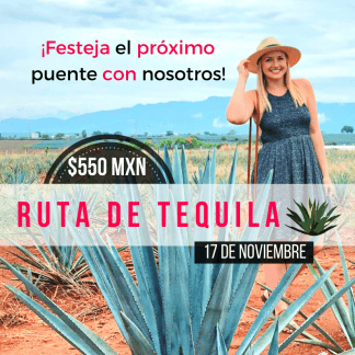 ruta de tequila, tequila, tour