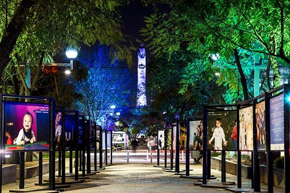 Guadalajara paseo chapultepec, gastronomía, vida nocturna