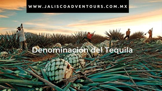 Denominación Tequila