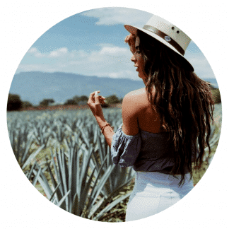 tequila, agave, tours, recorridos, personalizados, jose cuervo express