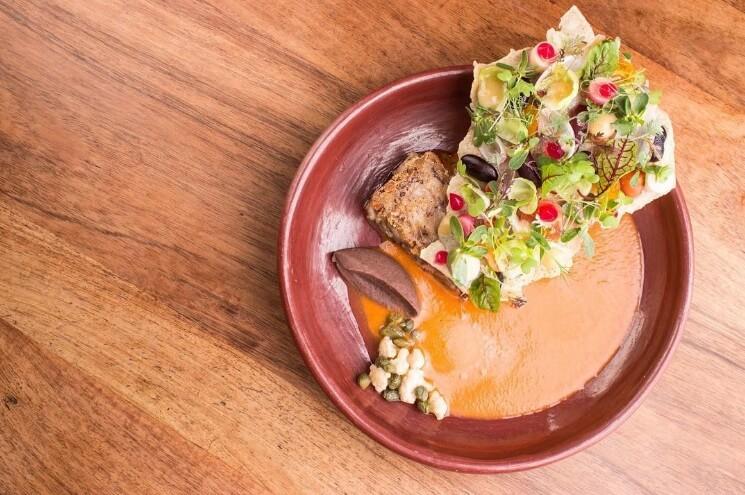 mejores restaurantes de guadalajara, tipos de platillos, comida vegetariana, cocina, gastronomia mexicana, cocina gastronomica
